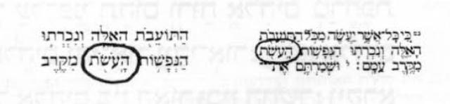 אות היא לעולם-קובץ מאמרים לעיצוב האות העברית-88